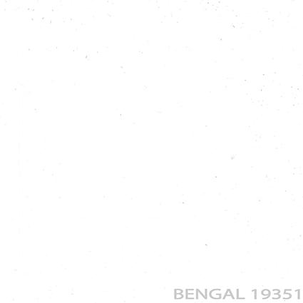 19351