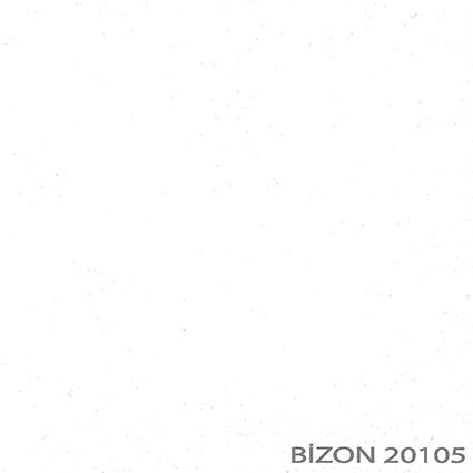 20105