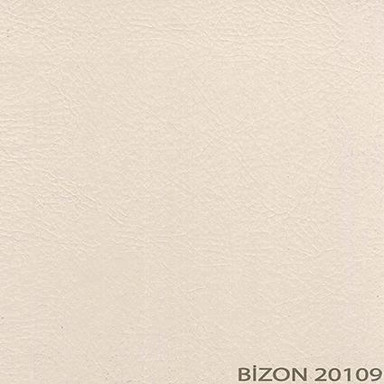 20109