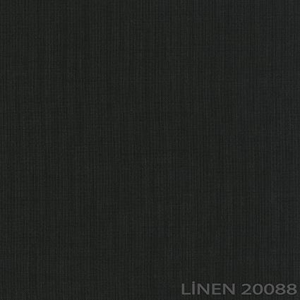 20088