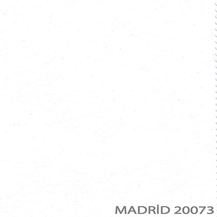 20073