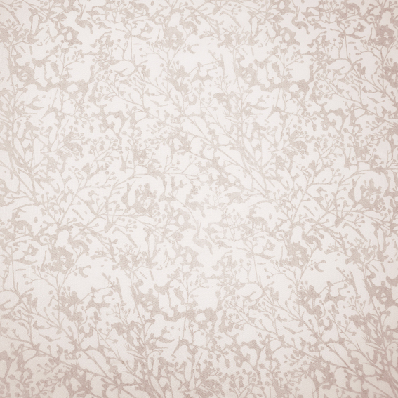 TAUPE101